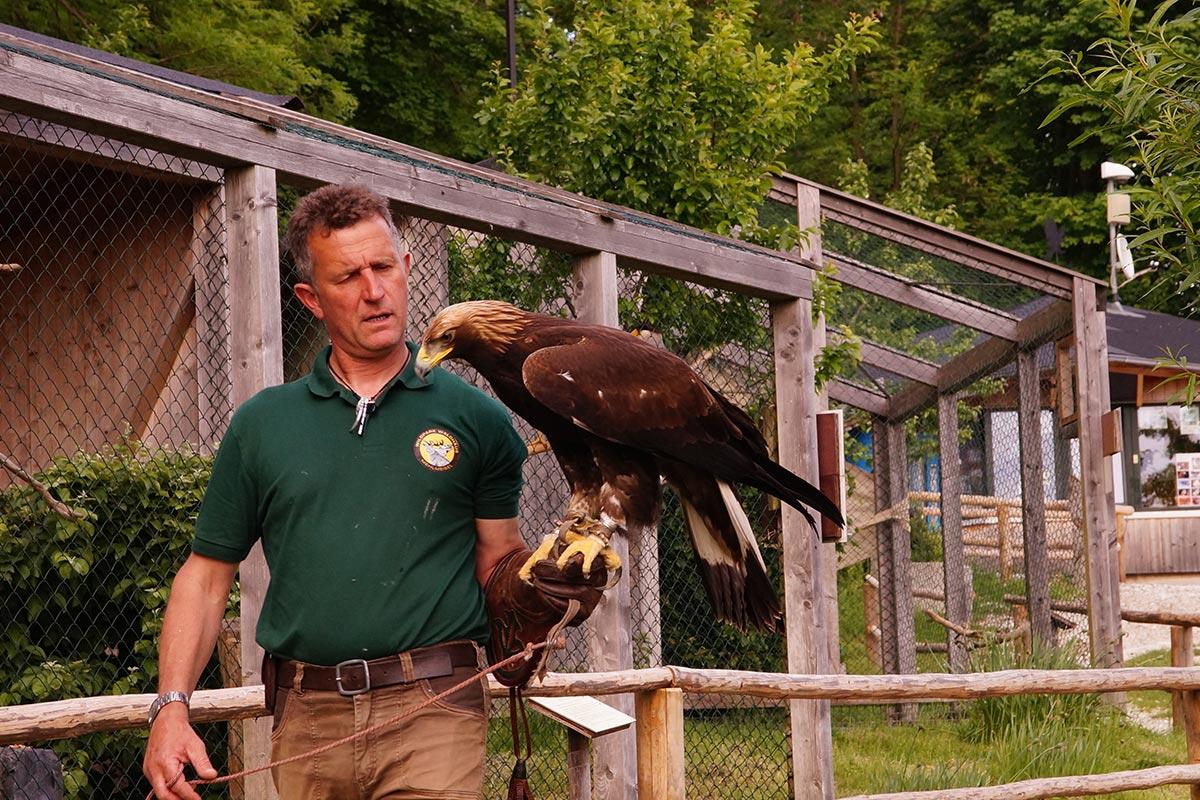 Greifvogelpark im Fichtelgebirge