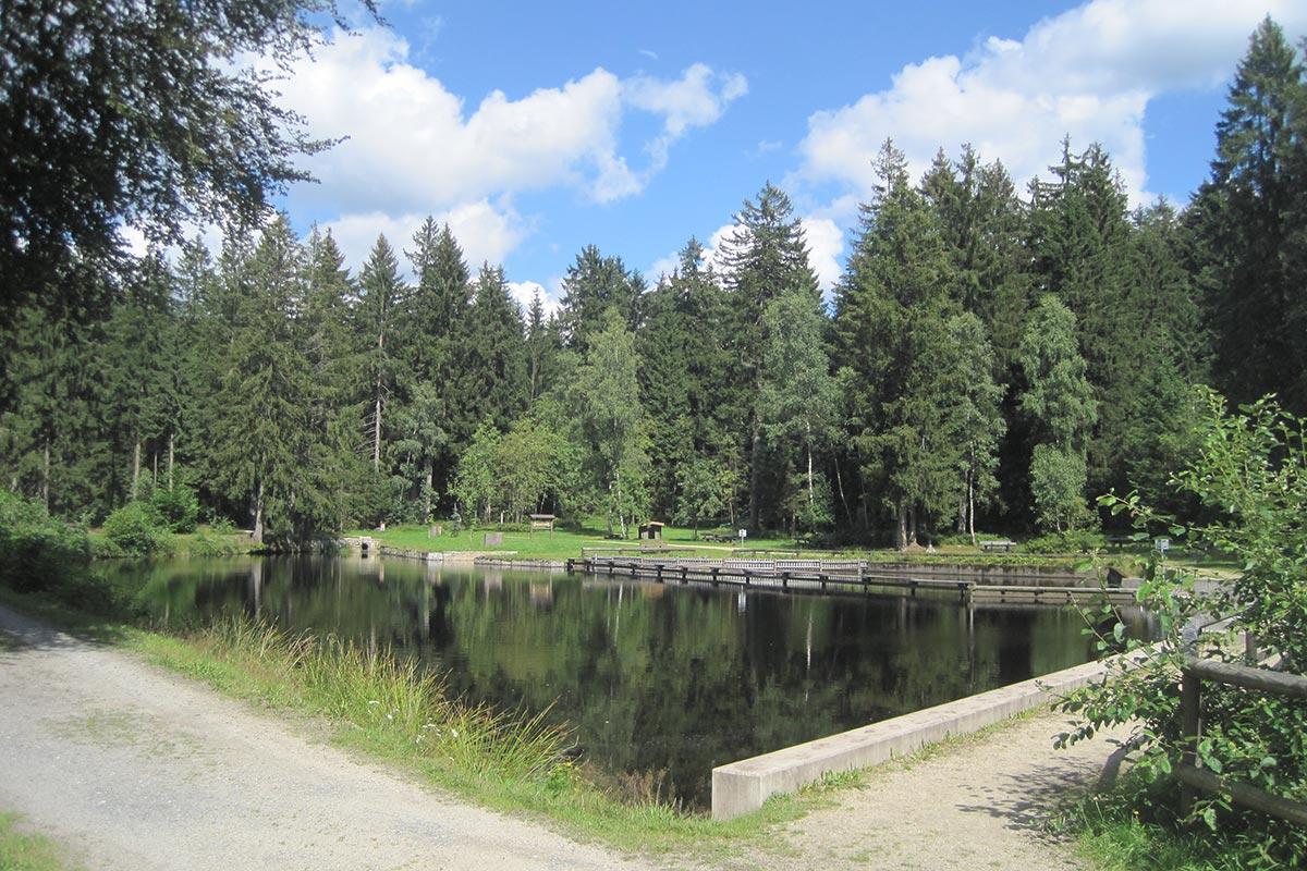 Moorbad in Warmensteinach