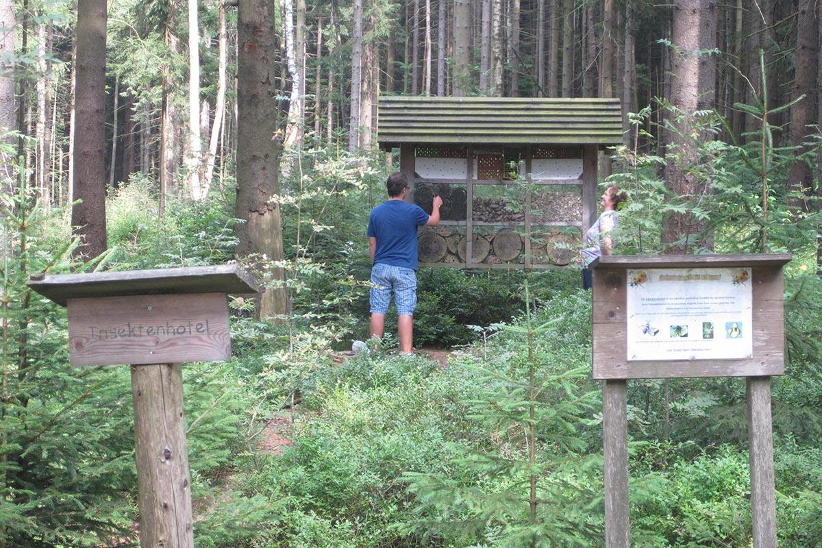 Walderlebnispfad  Insektenhotel